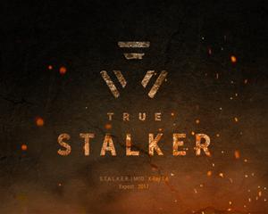 True Stalker скачать торрент - фото 3